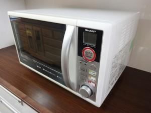 DSC00008 (1)